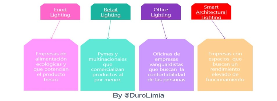 Duro Limia Pasos Plan Social Media Buyer Persona