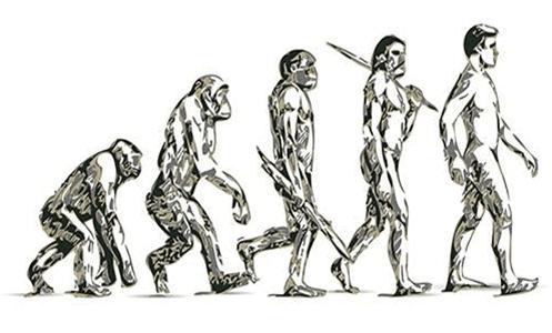 Transformación Digital Darwin