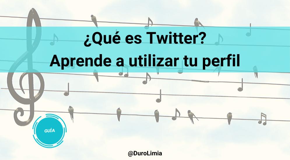 Sonia Duro Limia - ¿Qué es Twitter, para qué sirve, cómo funciona? Guía para tu perfil