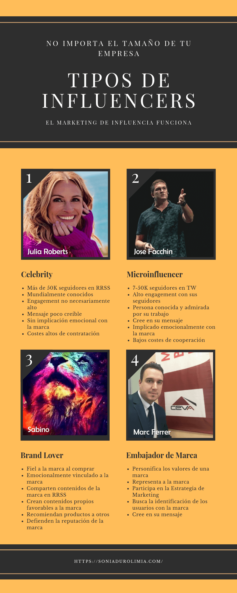 tipos de influencers infografia duro limia