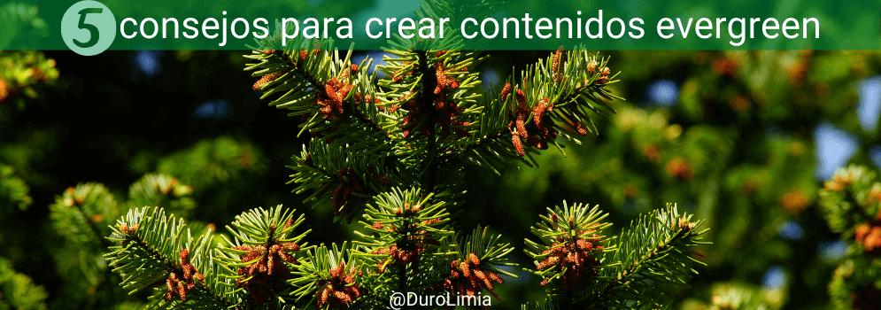 consejos para crear contenidos evergreen
